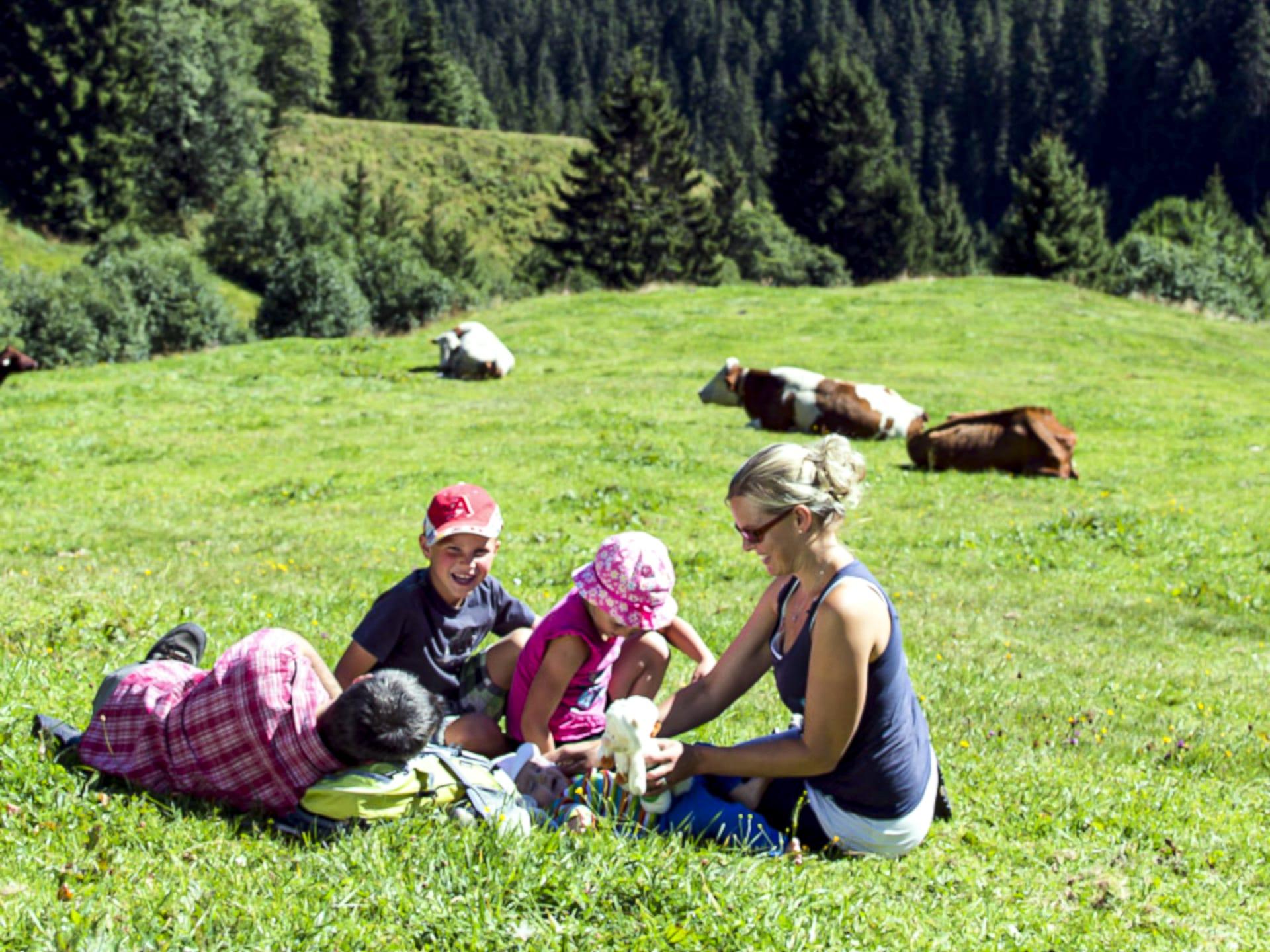 Gutshof-Klausenstein-Urlaub-Hollersbach-Salzburg-Ferienwohnungen-Appartements (2)